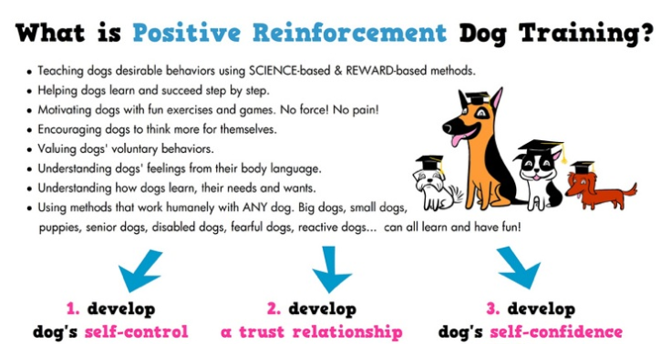 Examples Of Negative Reinforcement In Dog Training